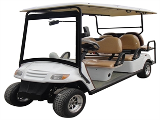 CitEcar Electro Neighborhood Buddy 6 Passenger (Back to Back) Street Legal Golf Cart