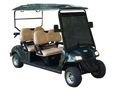 CitEcar Electro Neighborhood Buddy 4 Passenger (Forward Facing) Street Legal Golf Cart