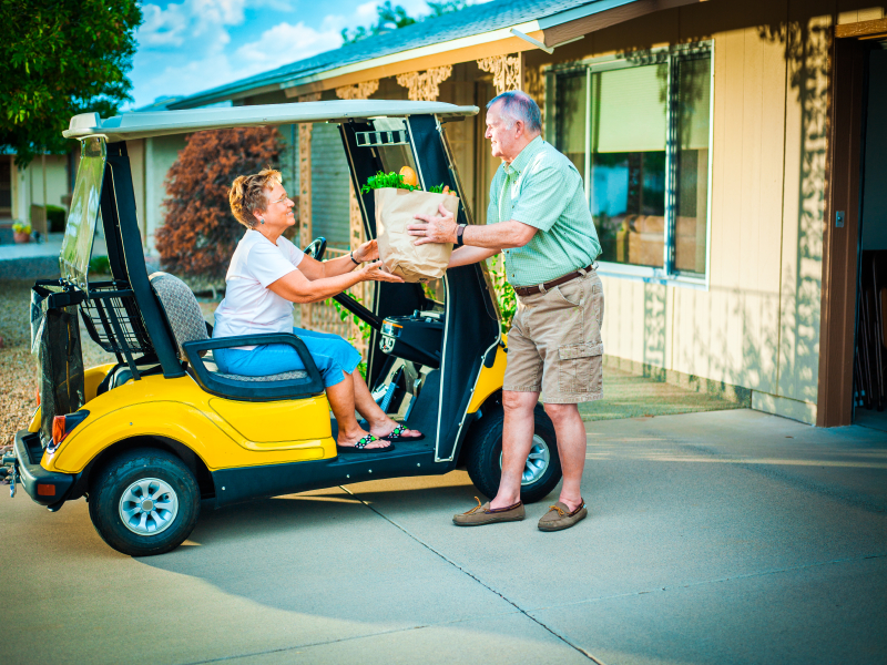 Will Low-Carbon Societies Rely on Electric Carts?